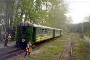 на станции Сосновка